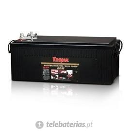 Batterie trojan 8d - agm 12v 230ah