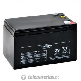 Blanca Agm12-12 12V 12,3Ah battery